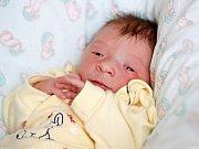 JAKUB PELZL si poprvé prohlédl svět v pondělí 8. února v 4.26 hodin. Při narození vážil 2 940 gramů a měřil 49 centimetrů. Maminka Anna a tatínek Jakub se těší z malého Jakoubka doma v Aši.