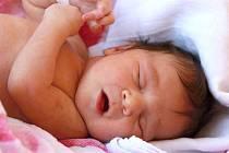 MARIA DIMITROVÁ se narodila v úterý 2. dubna v 6.43 hodin. Při narození vážila 3 350 gramů. Maminka Lenka a tatínek Denko se radují z malé Marušky doma v Aši.