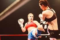 Již poosmé se mohli příznivci zápasů K-1, MMA a zápasů v thajském boxu těšit na tradiční mariánskolázeňskou Noc boje na mariánskolázeňském zimním stadionu.