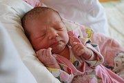ROZÁLIE VĚTŘÍČKOVÁ bude mít vrodném listu datum narození středu 17. ledna v9.33 hodin. Na svět přišla sváhou 3210 gramů. Zmalé Rozálky se těší doma vChebu sourozenci František, Marek a Julie, maminka Magdalena a tatínek František.