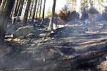 K Milíkovu vyjíždělo několik hasičských jednotek k požáru lesa. Foto: Hasičský záchranný sbor Správa železnic, státní organizace JPO Cheb
