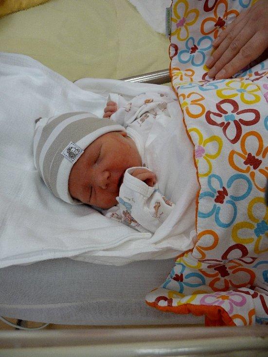 ELLEN se narodila 21. ledna v 0.17 hodin ve Fakultní nemocnici v Plzni. Narodila se s váhou 3 130 gramů a mírou 49 centimetů. Na světě svoji prvorozenou holčičku přivítali maminka Hedvika Húsková a tatínek Nobert Pohl z Plesné.