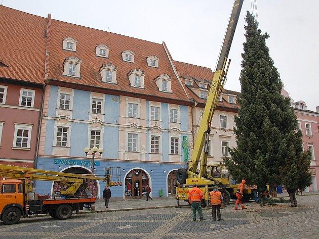 13 metrů vysoký stříbrný smrk městu darovala rodina Douchova z Chebu.