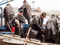 VÝLOV má za sebou i největší rybník Karlovarského kraje - Amerika ve Františkových Lázní