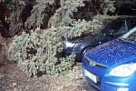 V Karlovarském kraji silný vítr řádil hlavně na Chebsku. Hasiči museli hned na několik míst vyjet kvůli popadaným stromům.