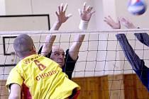 Agro Cheb zahrálo špičkový volejbal, ale na titul nedosáhlo