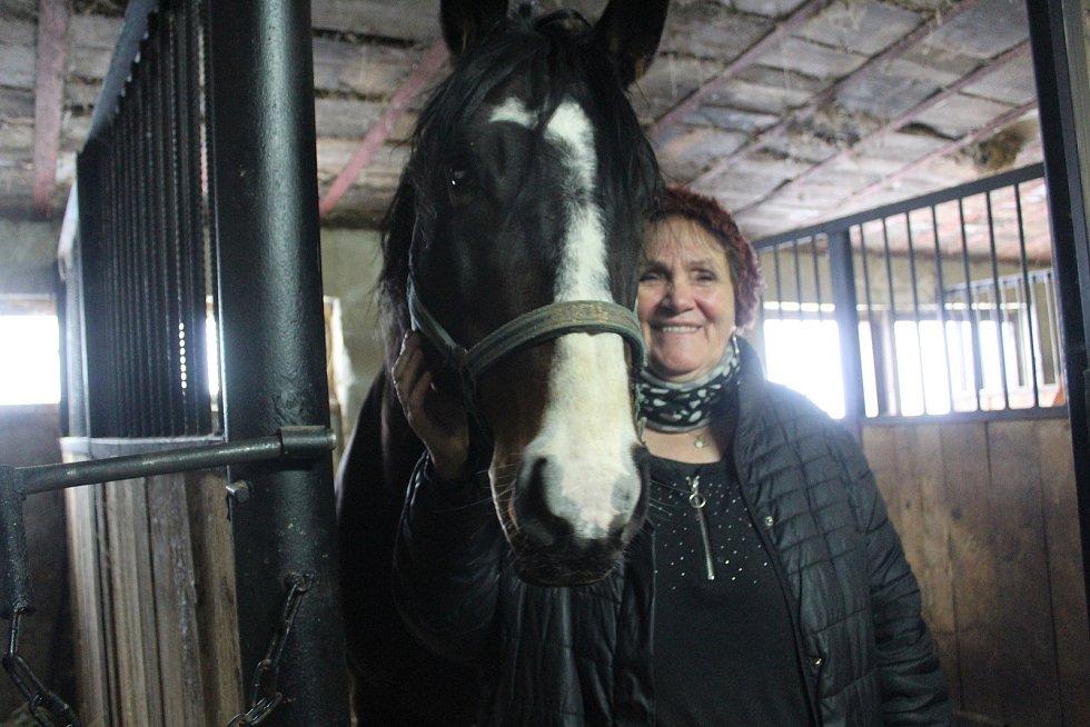 Eva Klestilová s jedním ze svých koní.