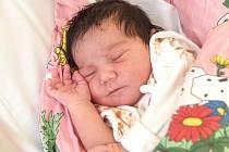 MARCELA ŠIVÁKOVÁ se poprvé rozkřičela v sobotu 28. února v 20.15 hodin. Na svět přišla s váhou 3 620 gramů a mírou 49 centimetrů. Z malé Marcelky se těší doma v Aši sourozenci spolu s maminkou Ivetou a tatínkem Bartolomějem.