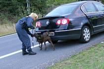 PERVITIN našel v autě vietnamské řidičky pes vycvičený na vyhledávání drog.