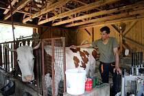 Jiří Sýkora i jeho žena Eva se mají co otáčet. Kromě farmy mají i běžné zaměstnání. Zajímavostí této maličké farmy je skutečnost, že u Sýkorů dojí krávy muži.