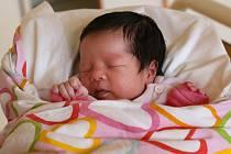 TO DIEP THANH TRANG se poprvé rozkřičela ve středu 11. prosince v 8.28 hodin. Při narození vážila 3 200 gramů. Doma v Chebu se z malé holčičky těší bráška spolu s maminkou Thuy a tatínkem Dung.