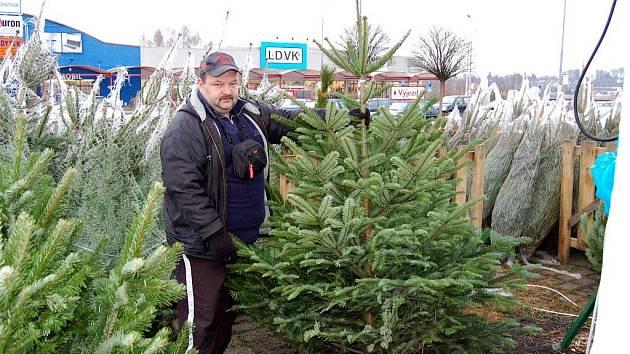 Prodej vánočních stromů.