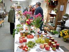 Současná zima by podle odborníků neměla růst a ovoce a zeleniny ohrozit.