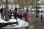 POTÁPĚČI z celého Karlovarského kraje se na konci prosince sjeli do Chebu, aby si zaplavali v mrazivé Ohři. Akce se zúčastnily na břehu i ve vodě desítky lidí.