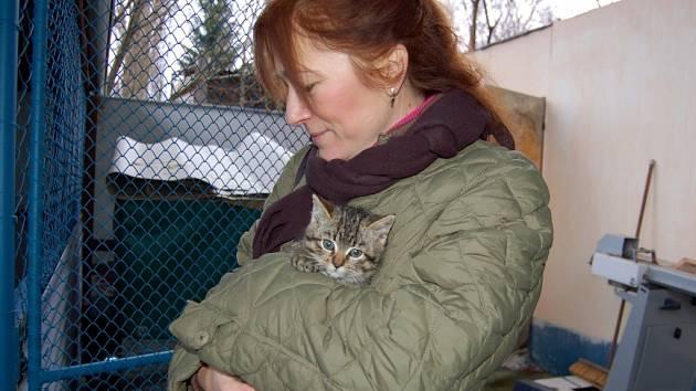 Slavnostní otevření útulku pro kočky v Mariánských Lázních