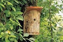 V POUSTCE rozvěsí zájemci nové ptačí budky. Má jich být asi 70.