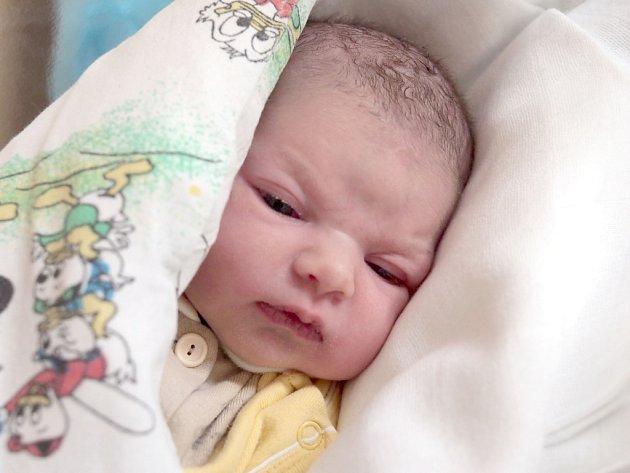 TEREZA ORAČKOVÁ přišla na svět v pondělí 26. listopadu v 9.15 hodin. Vážila 3 190 gramů a měřila 50 centimetrů. Doma v Mariánských Lázních se z malé Terezky raduje maminka Kateřina spolu s tatínkem Ivanem.