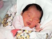 ANGELA NGUYEN se poprvé rozkřičela v úterý 15. prosince v devět hodin. Při narození vážila 3 040 gramů a měřila 48 centimetrů. Z malé Angelky se raduje doma v Chebu maminka Ngoc a s ní celá rodina.