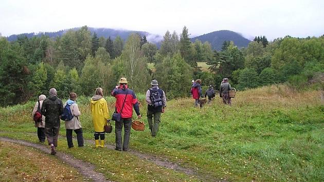 Mykologická procházka.