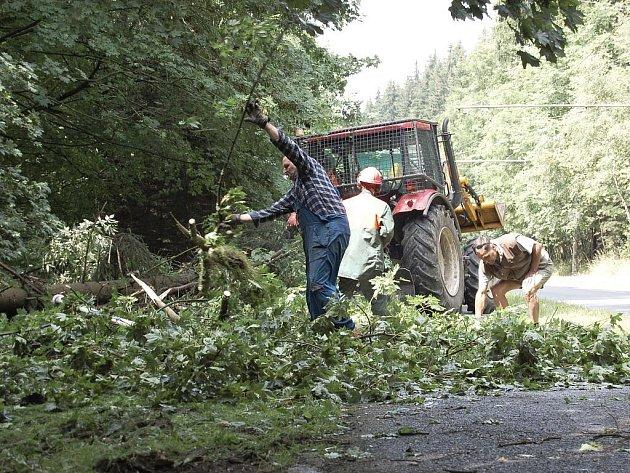 STROMY NAPŘÍKLAD POPADALY u železničního mostu v Mariánských Lázních. Zde je museli pracovníci Lázeňských lesů rozřezat a odstranit z chodníku pro pěší. Pomoct jim musel i traktor s navijákem.