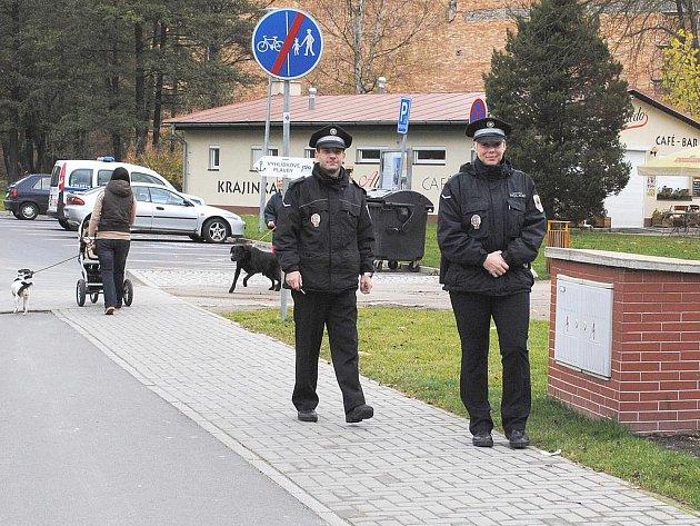 Z MOBILU se na linku 156 lidé dovolají pouze chebským strážníkům. Je proto lepší najít si telefonní číslo na konkrétní služebnu.