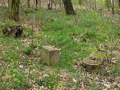 Zanedbaný prostor hřbitova válečných zajatců z 1. světové války v Chebu - Podhradě