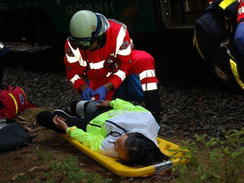DESÍTKY ZRANĚNÝCH museli zachránit hasiči a zdravotníci z havarovaného vlaku u Studánky u Aše, kde se uskutečnilo cvičení složek integrovaného záchranného systému.