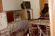 OBJEKT V KACEŘOVĚ sloužil jako psí vězení. Ve vlastních výkalech,  bez možnosti pohybu a v neuvěřitelném nepořádku tu žili dva psi. Jeden neobvyklou péči majitele nepřežil, druhého zachránili všímaví lidé.