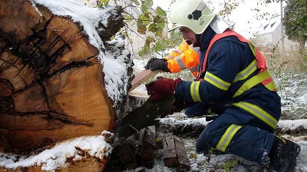 NÁMĚTEM HASIČSKÉHO CVIČENÍ v Aši bylo vyproštění člověka, na kterého spadl strom. Naštěstí se jednalo o figurínu.