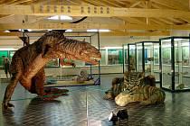Muzeum pravěkých ještěrů v Národní přírodní rezervaci Soos v Novém Drahově má opravenou střechu a modely pravěkých ještěrů.