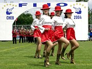 Festival FIJO Cheb 2008