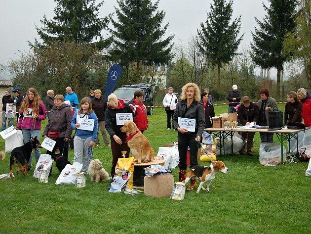 V pořadí již druhý ročník Voříškiády se konal u psího útulku v Mariánských Lázních.