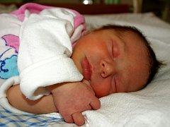 NATÁLIE HOLUBOVÁ přišla na svět v sobotu 17. ledna v 11.25 hodin. Při narození vážila 2880 gramů a měřila 48 centimetrů. Tatínek Radek se těší, až si maminku Michaelu a dcerku Natálku poveze domů do Skalné.