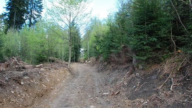 Cesta na vrch Háj v Aši.