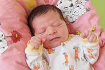 TIFFANY RANGLOVÁ si poprvé prohlédla svět v sobotu 28. března v 23.55 hodin. Při narození vážila 3 420 gramů a měřila 50 centimetrů. Doma v Plesné se z malé holčičky těší maminka Denisa, tatínek Jaroslav a bráška Samuel.