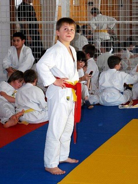 JEDNU z kategorií na turnaji mládeže v judu, jež se uskutečnil v Mariánských Lázních, vyhrál domácí závodník Jan Hruška.