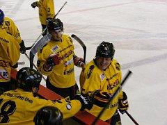 Celkem čtrnáctkrát se radovali hokejisté HCH Cheb v duelu s německým ESC Hassfurt