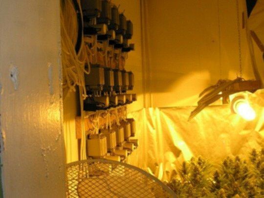 Policisté našli v Hranicích u Aše pěstírnu konopí
