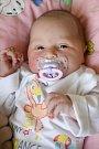ANNA IVANA HALÍKOVÁ se poprvé rozkřičela v úterý 2. května v 11.03 hodin. Na svět přišla s váhou 3 360 gramů. Z malé Anička se raduje´í doma v Hazlově sestřičky Michaela, Tereza a Natálie, maminka Lucie a tatínek Jan.