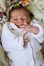 STANISLAV VALEČKA si poprvé prohlédl svět v sobotu 25. června v 4.30 hodin. Při narození vážil 3 530 gramů a měřil 50 centimetrů. Doma v Chebu se z malého Stáníčka těší sourozenci Eliška s Radečkem, maminka Marta a tatínek Radek.