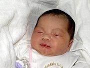 GIA HAN DOAN, holčička, se narodila v sobotu 31. října ve 22.20 hodin. Při narození vážila krásných 3900 gramů a měřila 50 centimetrů. Doma v Chebu se těší tatínek Doan Gia Bao na návrat maminky Nguyen Thi Van a malé dcerušky.