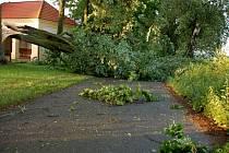 Následky řádění středeční podvečerní bouře na Chebsku - Silnice u Maria Loreto zablokovaná zlomeným stromem