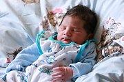 DENIS BÍLÝ si poprvé prohlédl svět vpondělí 1. ledna v11.55 hodin. Při narození vážil 3000 gramů. Zmalého Deniska se těší doma vChebu sourozenci Tomášek sElisskou, maminka Aneta a tatínek Tomáš.