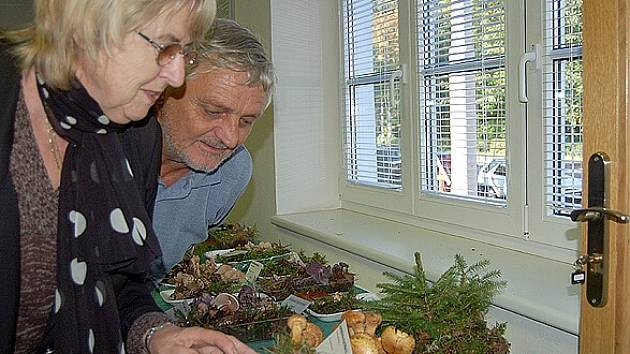 Manželé Jaroslava a Petr Poslovi