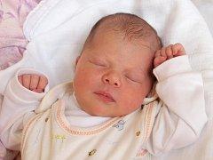 GABRIELA KOVANDOVÁ si poprvé prohlédla svět ve středu 17. července v 1.12 hodin. Vářila 3 280 gramů a měřila 50 centimetrů. Z malé Natálky se těší doma v Aši sestřička Natálka, maminka Eva a tatínek Jirka.