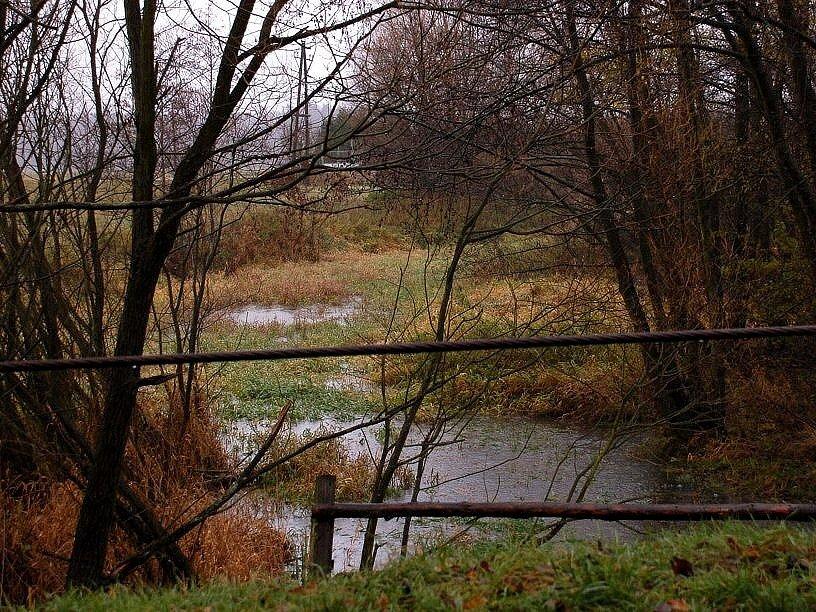 V Nebanicích na Chebsku se včera začínala rozlévat voda