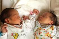 ALEXANDRA A JIŘÍ SCHEJBALOVI se narodili v chebské porodnici v sobotu 5. června v 17  a 17.02 hodin. Doma v Kynšperku se těší ze sourozenců sestřička Kačenka, maminka Kateřina a tatínek Jiří.