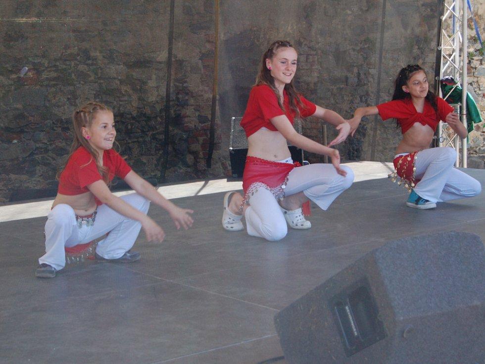 Více než dvacet organizací prezentovalo svoji činnost na Bambiriádě v Chebu.