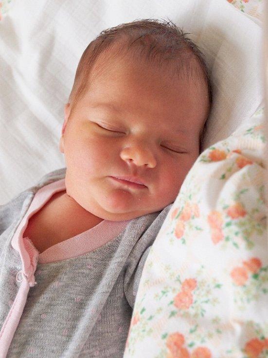 ŠÁRKA JODASOVÁ si poprvé prohlédla svět v úterý 13. ledna v 6.30 hodin. Při narození vážila 3 290 gramů a měřila 50 centimetrů. Maminka Barbora a tatínek Martin se radují z malé Šárinky doma v Praze.