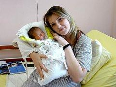 PAVLÍNA HOŠKOVÁ přišla na svět 17. února ve FN v Plzni. Narodila se s váhou 3 570 gramů a mírou 50 centimetrů. Na světě Pavlínku přivítali rodiče Ivana Mlejnková a David Hošek a sourozenci Jindra a Fanda z Mariánských Lázní.